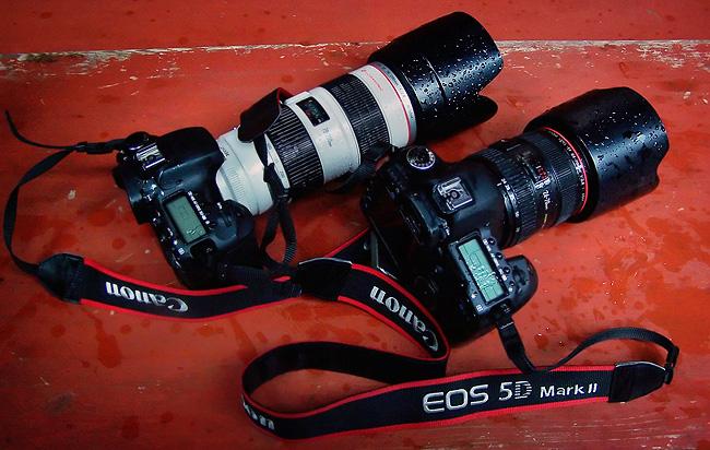 Canon EOS 5D Mark II y 7D - Prueba de sellado y resistencia a las bajas temperaturas